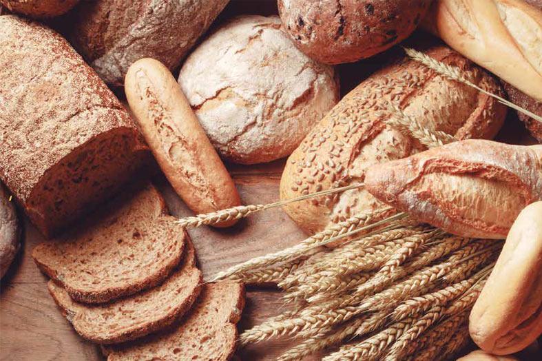 Com vocês, o pão: o maior companheiro do homem