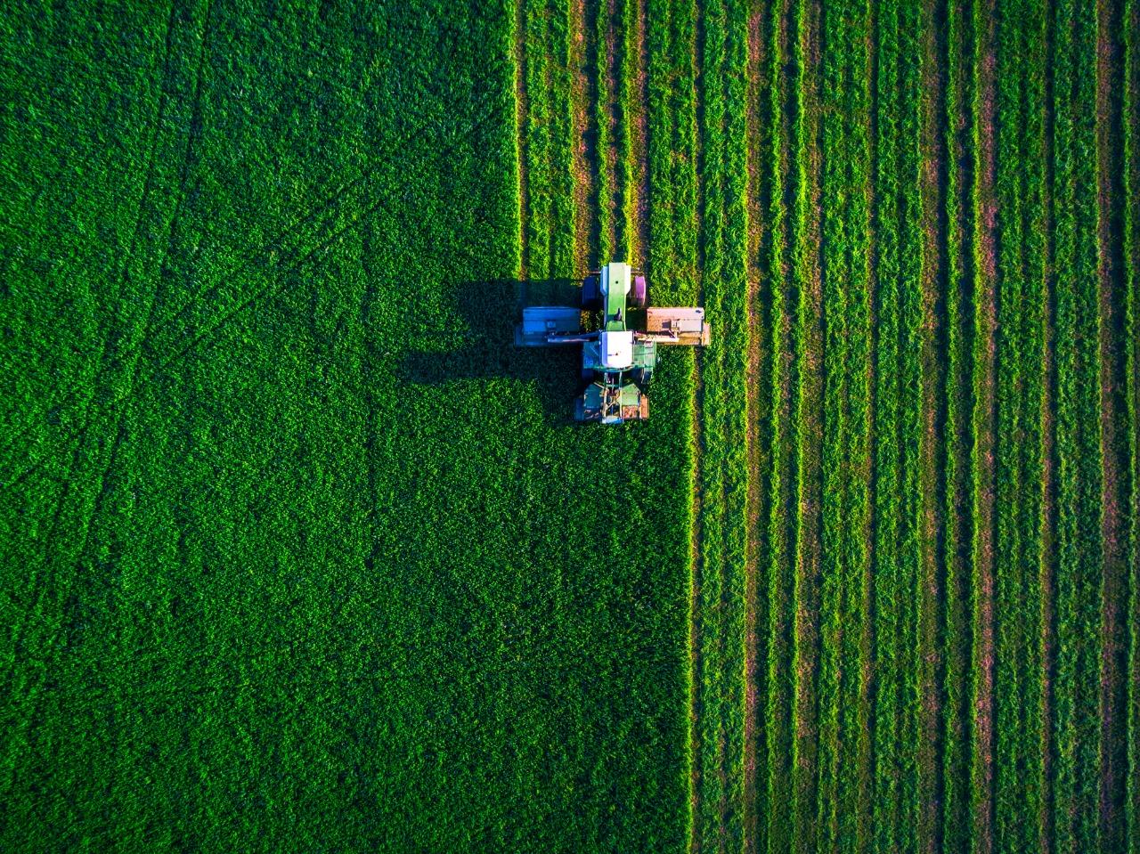 Veja 6 contribuições do agronegócio brasileiro para o País e o mundo