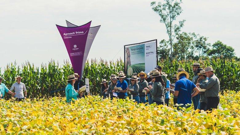Rio Grande do Sul recebe o primeiro Agronomy Day focado em proteção de cultivos