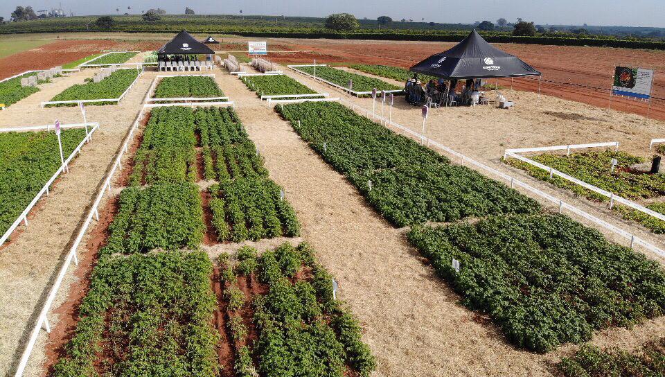 Agronomy Day Corteva