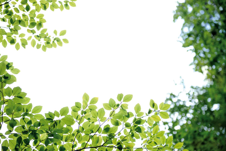 160722_sustentabilidade-