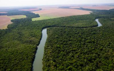 Summit Agronegócio Brasil 2020   Desenvolvimento sustentável e preservação ambiental