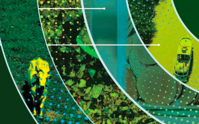 Brasil Verde | Mercado de Carbono é tema de caderno especial