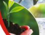 2º Fórum ESG discute emergência climática